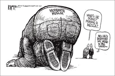 Moderate Muslim