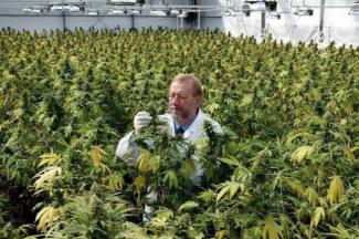 【社会】「大麻を使用していました」 高樹沙耶容疑者が供述©2ch.net YouTube動画>24本 ->画像>79枚
