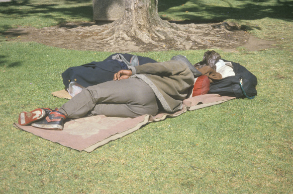 homeless_man_losangeles_shutterstock_590