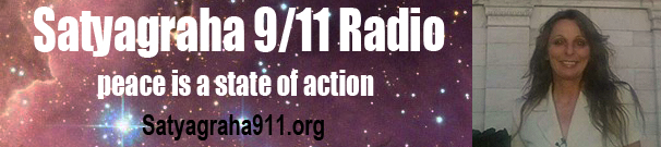 Sat 911 banner